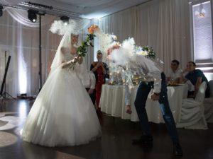 шоу на свадьбу, научное шоу на свадьбу